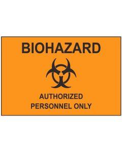Biohazard 2 aw