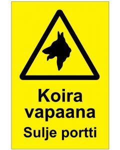 Varo koiraa