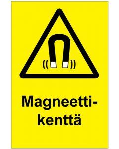 Magneettikenttä MAG